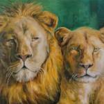 Pärchen - Löwen
