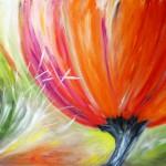 Blütenträume -Tulpe