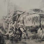 Neokubistisches Nashorn spaziert auf dem Kudamm_2017_ 40 x 60 cn_Kohlezeichnung auf Papier